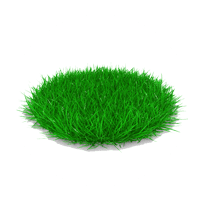 Healthy grass icon for Land-Art in Florida & Ohio