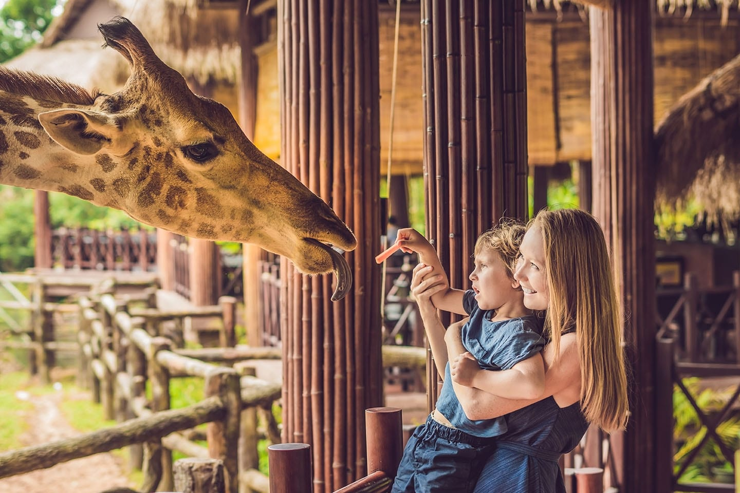 Mother & son feeding a giraffe at the Naples Zoo at Caribbean Gardens in Naples Florida