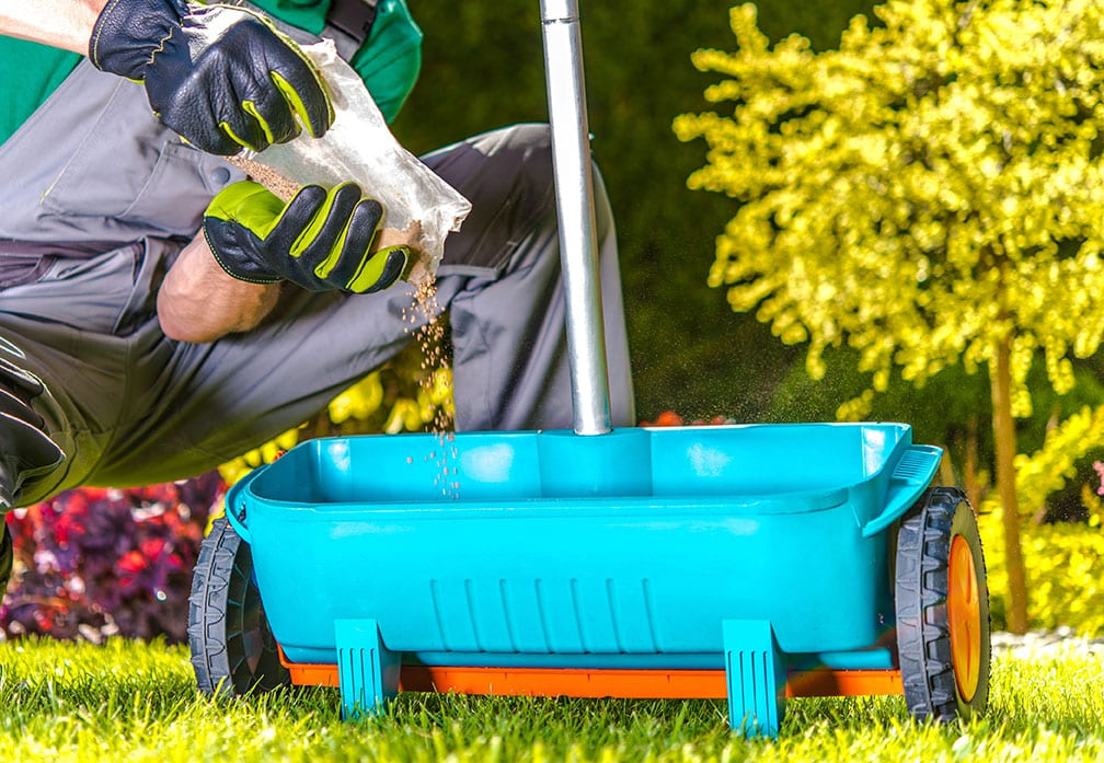 A lawn care technician pouring seeds into a spreader