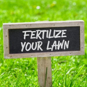 Fall lawn fertilization is an essential fall lawn care task and will give your Toledo, OH lawn the nutrients it needs going into the winter.