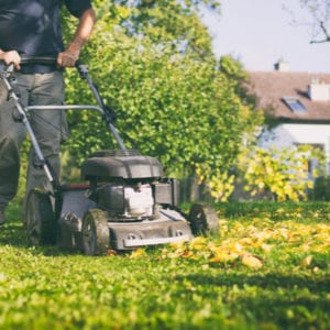Mulching the leaves in your yard provides an appropriate leaf cover that acts as a fertilizer for your Toledo, OH lawn.