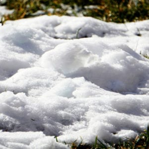 Avoiding piling snow on your lawn is an excellent way to prevent snow mold in your lawn.