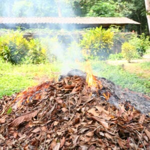 pile of leaves burning