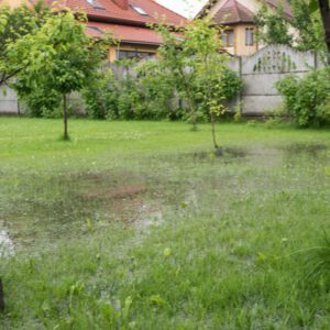 yard flooded after hurricane
